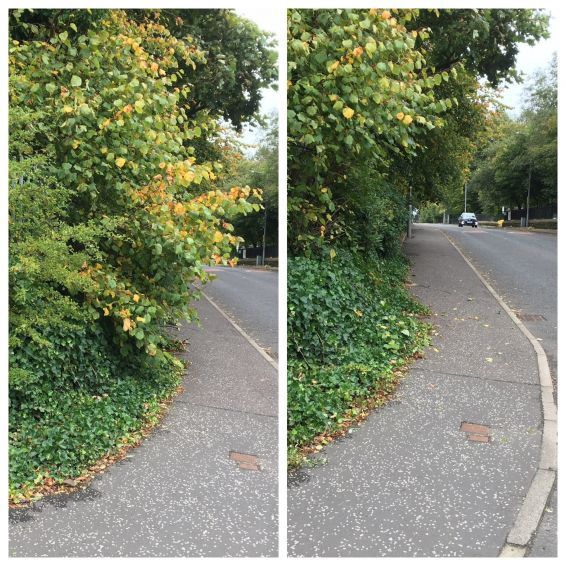 Before and after at Huntershill